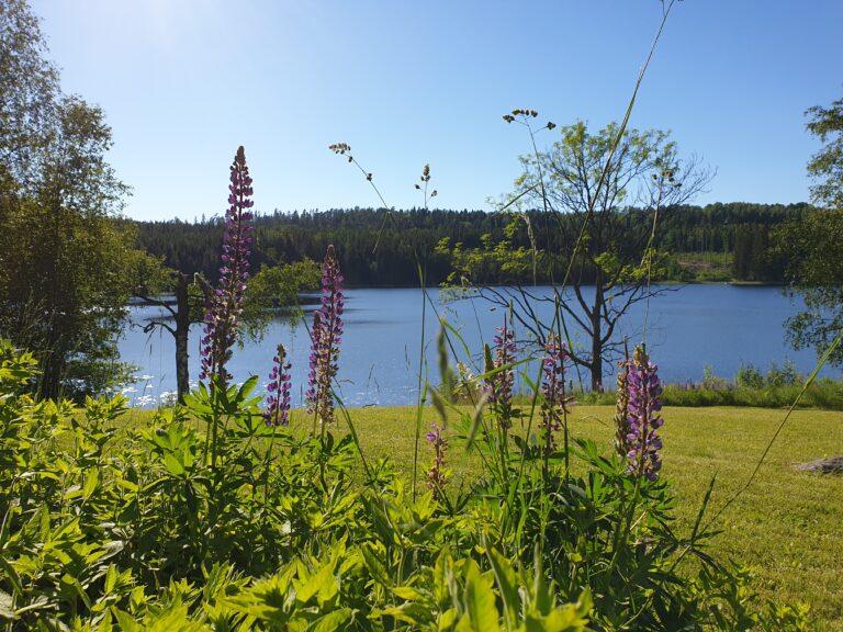Urlaub in Dalsland, Schweden